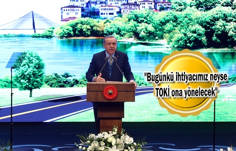 Cumhurbaşkanı Erdoğan: TOKİ