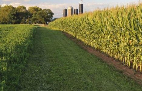 Tarım arazilerini devlet
