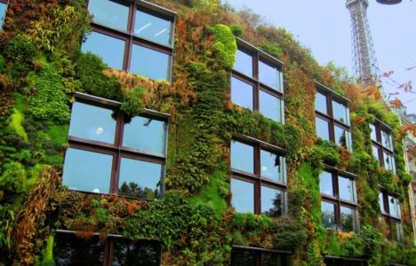 Binalar hem yeşil
