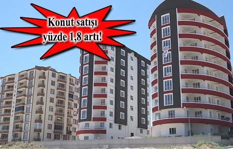 Türkiye'de Kasım'da 132