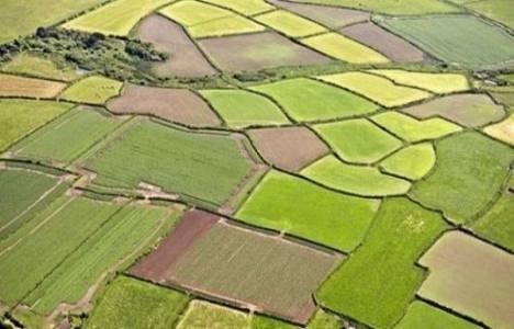 Tarım arazilerinde pay temliki 2014!