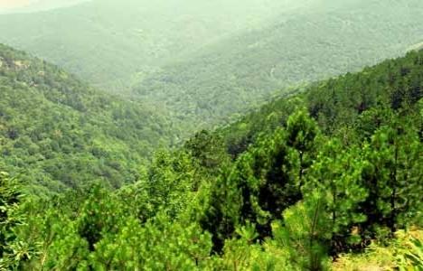 Kaz dağları UNESCO
