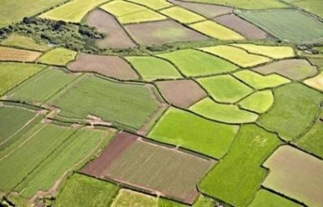 Tarım arazilerinde intikal