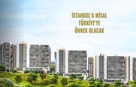 Misal İstanbul Evleri lansman!