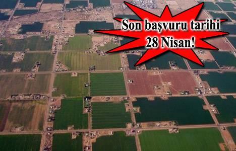 Hazine'ye ait tarım arazilerinin satışı için başvurular başladı!
