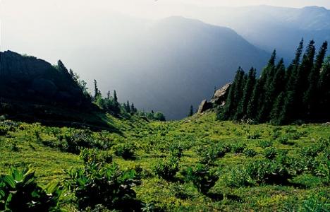 Kaz Dağları UNESCO Dünya Mirası listesine girecek mi?