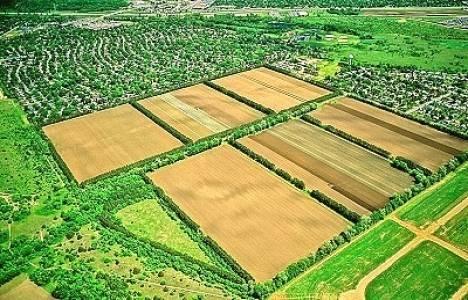 Tarım arazileri miras