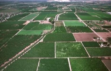 Tarım arazileri devri