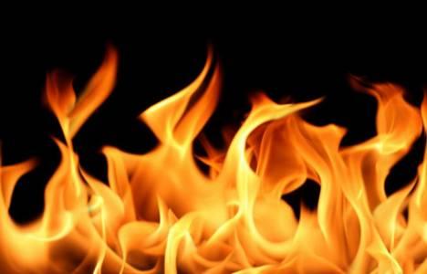 Mersin'de kamış fabrikasında yangın çıktı!