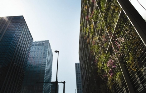Doğadan uzak ofisler