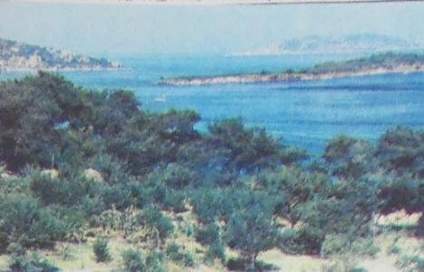 1983 yılında Adalar