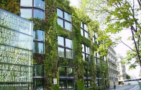 Yeşil binalar ilgi