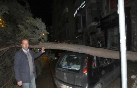 Samsun'da şiddetli rüzgar nedeniyle elektrik kesintisi yaşandı!