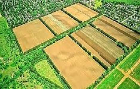 Tarım arazilerinde kamu yararı aranacak!