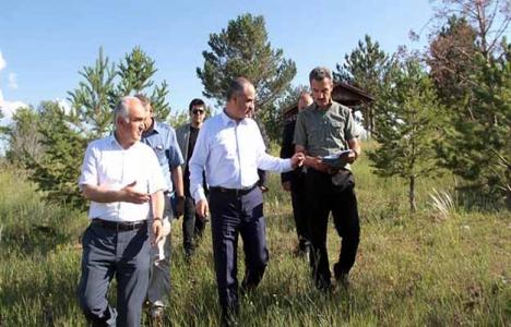 Sivas'a yeni mesire alanı müjdesi!
