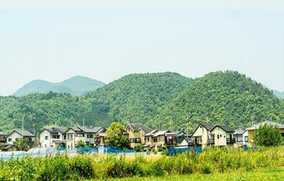 Japonlar evlerini bedavaya