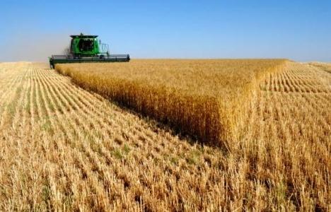 Verimli tarım arazilerine dokunulmazlık geliyor!