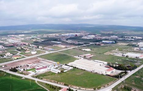 Çorum'da 215 hektarlık