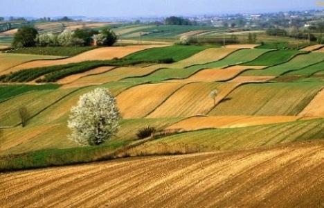 Miras tarım arazileri