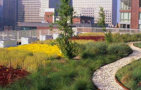 Çatı bahçesi nedir? Emsale dahil mi?