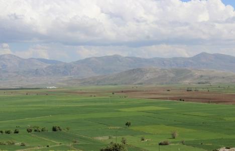 Tarımsal arazilerin devri