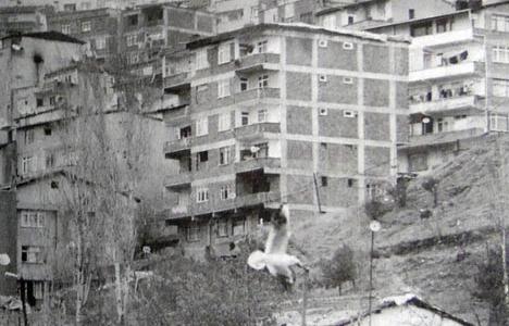 2004 yılında Büyükşehir