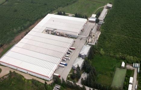Kelebek Mobilya Düzce fabrikasına yatırım yapacak!
