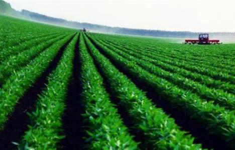 4.5 milyon dönüm tarıma kazandırıldı!