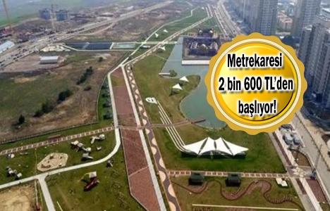 Bahçeşehir-Bahçekent'e 20 yeni