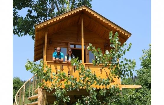 Kavak ağacının gövdesine inşa edilen 13 metrekarelik ahşap pansiyon yoğun ilgi görüyor!