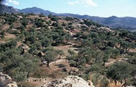 Aydın'daki Beşparmak Dağları