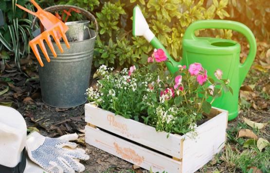 Yeni bir emlak yatırım aracı: Hobi bahçeleri!