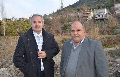 Kozan'a sofralık zeytin tesisi kurulacak!