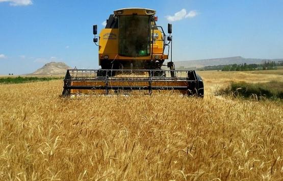 Ukrayna'da arazi fiyatları düşüşte!