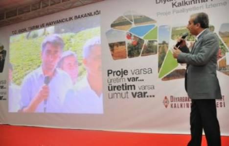 Diyarbakır-Batman-Siirt Kalkınma Projesi kapsamında 35 milyon liralık yatırım gerçekleşti!