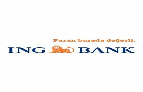 ING Bank 2013
