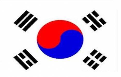 Koreliler Türkiye'den ev
