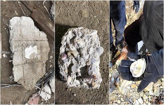 Kartal'da çöken binanın enkazındaki deniz kabukları görüntülendi!