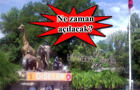 Ankara Hayvanat Bahçesi'nde