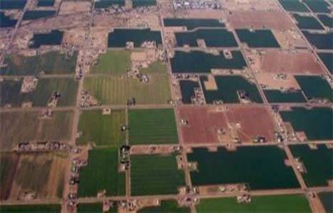 Samsun'da arazi toplulaştırma