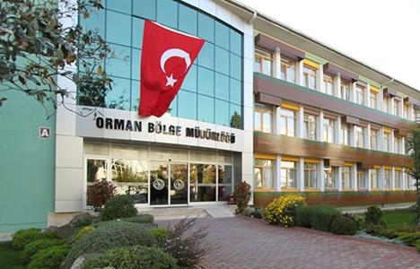 Ankara Orman Müdürlüğü 46 milyon TL'ye inşaat ihalesi yapıyor!