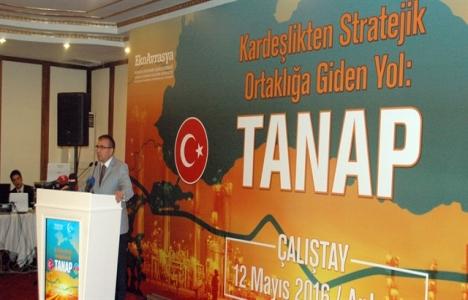 Seyfullah Türksoy: TANAP