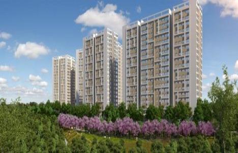 Tuzla Lokum Evler satılık ev fiyatları 2017!