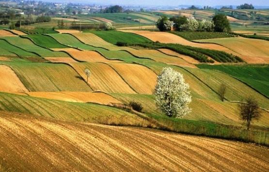 Artık tarım arazilerine