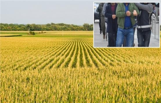 Adana'da suç örgütü üyeleri yaklaşık 400 dönüm tarım arazisine zorla el koymuş!