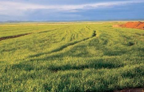 Tarım arazilerinin tapuları