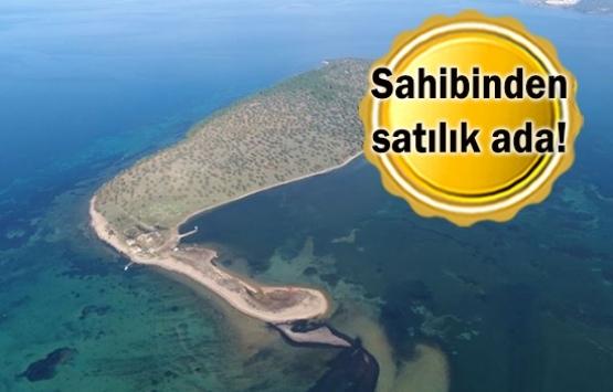 Ayvalık Çiçek Adası 105 milyon liraya satılıyor!