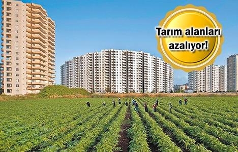 Tarım arazileri konut ve turizm amaçlı kullanılıyor!
