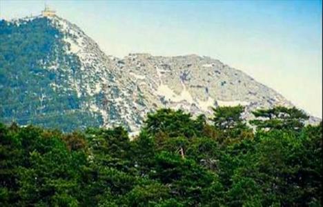 Spil Dağı Arap