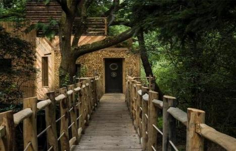 İşte İngiltere'deki en lüks ağaç ev!